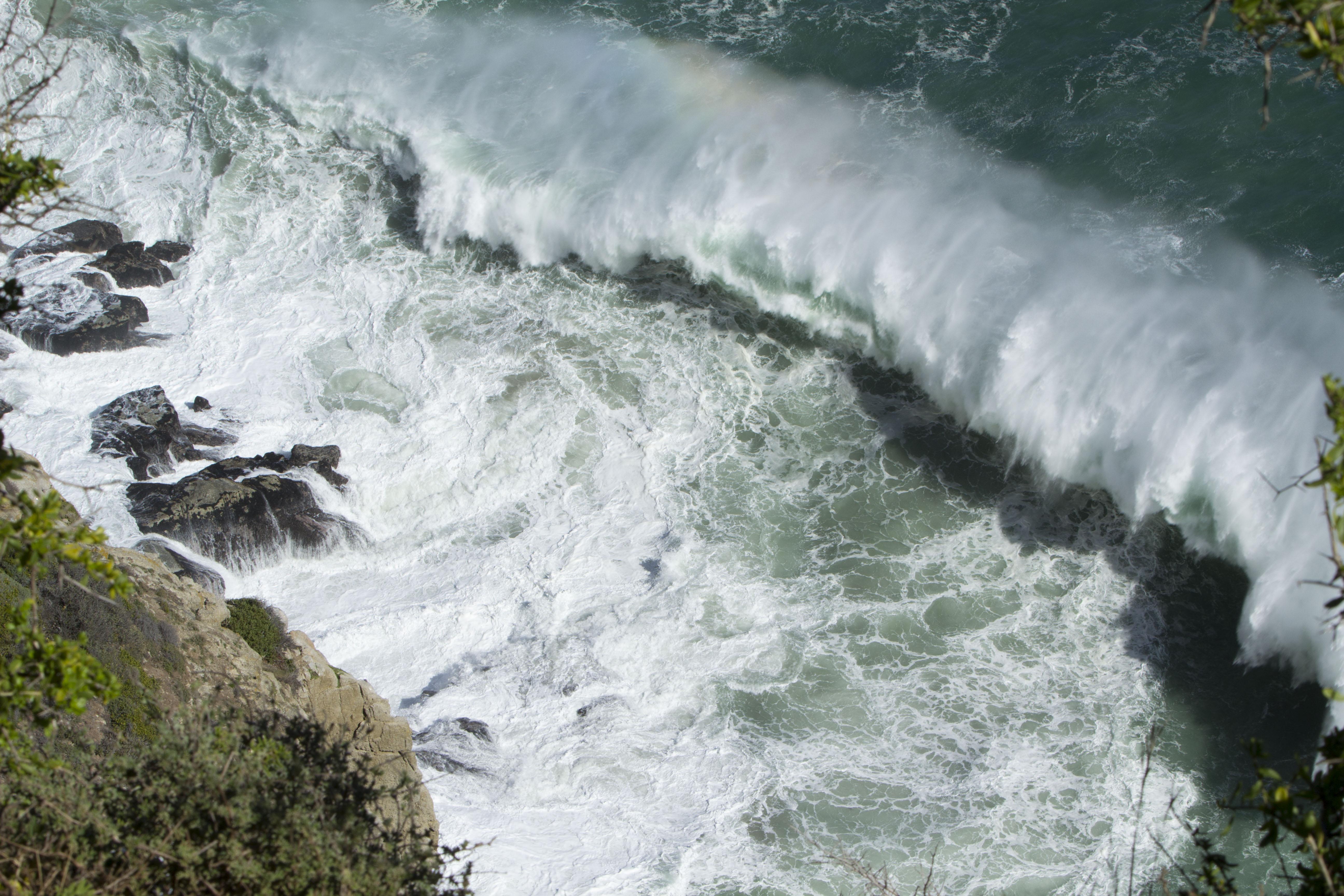 Spring Tide Cape Town Tarryn Hardwicke